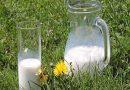Công dụng bất ngờ của sữa hết hạn mà bạn chưa biết